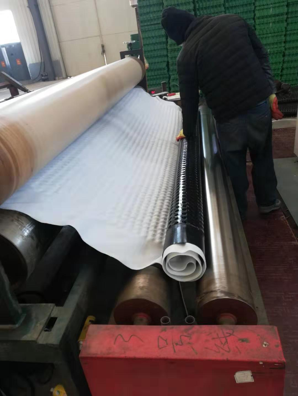 今日更新/晋中20mm聚乙烯阻根排水板疏水保水层