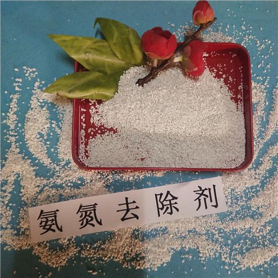 武陟 氨氮去除剂生产厂家 污水处理氨氮降解剂 公司