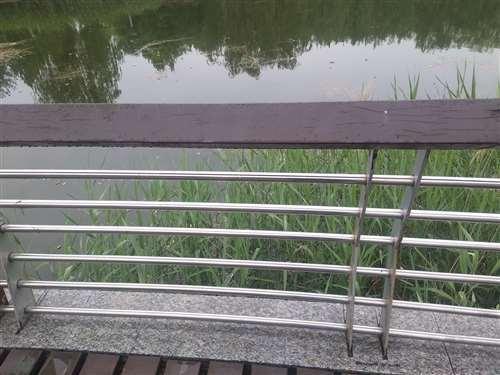 丽水碳钢喷塑护栏等您来电